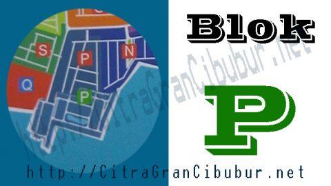 CitraGran Cibubur Blok P lake at the dance